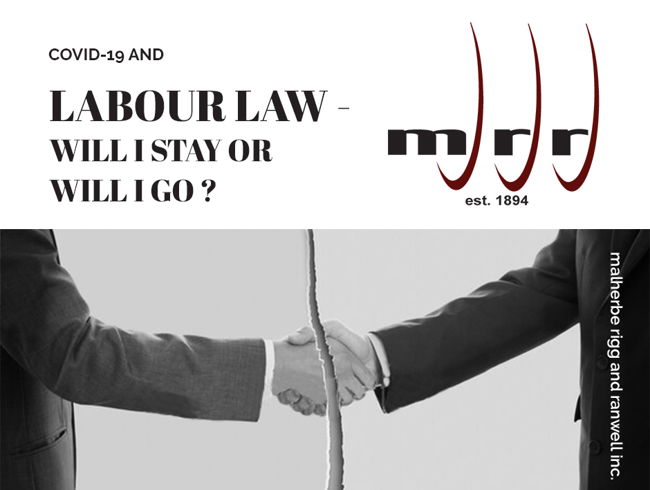 LABOUR LAW – WILL I STAY OR WILL I GO?